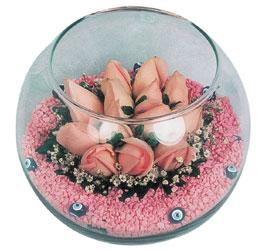 Bingöl Gölüm Çiçek internetten çiçek satışı  cam fanus içerisinde 10 adet gül