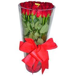 Bingöl Gölüm Çiçek çiçek online çiçek siparişi  12 adet kirmizi gül cam yada mika vazo tanzim