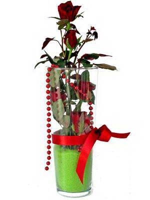 Bingöl Gölüm Çiçek online çiçek gönderme sipariş  Cam yada mika içerisinde 9 adet kirmizi gül - sevdiklerinize özel