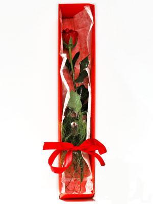 Bingöl Gölüm Çiçek yurtiçi ve yurtdışı çiçek siparişi  1 adet kutuda gül