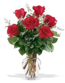 Bingöl Gölüm Çiçek çiçek gönderme sitemiz güvenlidir  7 adet kirmizi gül cam yada mika vazoda sevenlere
