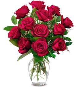 Bingöl Gölüm Çiçek online çiçek gönderme sipariş  1 düzine kirmizi gül sevenlere özel vazo gülleri