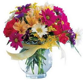 Bingöl Gölüm Çiçek internetten çiçek satışı  cam yada mika içerisinde karisik mevsim çiçekleri