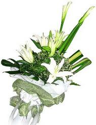 Bingöl Gölüm Çiçek güvenli kaliteli hızlı çiçek  3 dal kazablanka çiçegi ve yesillikler