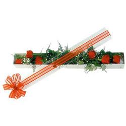 Bingöl Gölüm Çiçek çiçek siparişi sitesi  6 adet kirmizi gül kutu içerisinde