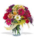 Bingöl Gölüm Çiçek çiçek , çiçekçi , çiçekçilik  cam yada mika vazo içerisinde karisik kir çiçekleri