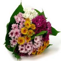 Bingöl Gölüm Çiçek çiçekçi telefonları  Karisik kir çiçekleri demeti herkeze