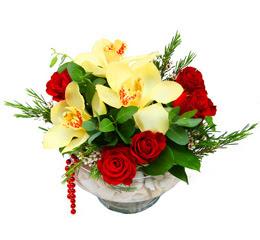 Bingöl Gölüm Çiçek çiçek gönderme  1 adet orkide 5 adet gül cam yada mikada
