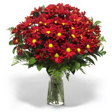 Bingöl Gölüm Çiçek çiçek yolla  Kir çiçekleri cam yada mika vazo içinde