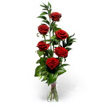 Bingöl Gölüm Çiçek çiçek siparişi sitesi  cam yada mika vazo içerisinde 6 adet kirmizi gül