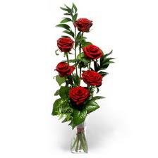 Bingöl Gölüm Çiçek uluslararası çiçek gönderme  mika yada cam vazoda 6 adet essiz gül