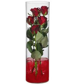 cam içerisinde 7 adet kirmizi gül  Bingöl Gölüm Çiçek çiçekçiler