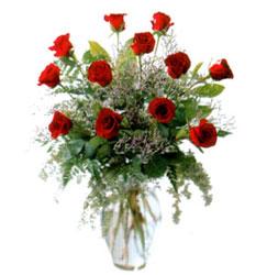 Vazo içerisinde 11 kirmizi gül  Bingöl Gölüm Çiçek çiçek siparişi vermek