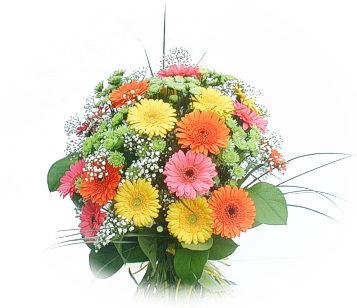 13 adet gerbera çiçegi buketi  Bingöl Gölüm Çiçek online çiçek gönderme sipariş