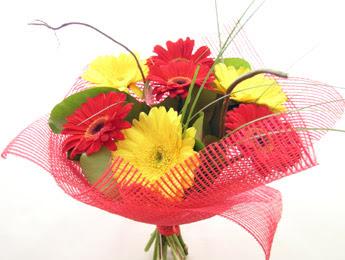 9 adet gerbera çiçeklerinden buket  Bingöl Gölüm Çiçek çiçek satışı