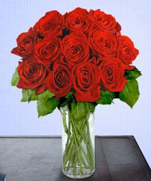 Anneme 12 adet cam içerisinde kirmizi gül  Bingöl Gölüm Çiçek çiçek siparişi sitesi