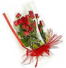 13 adet kirmizi gül buketi sevilenlere  Bingöl Gölüm Çiçek çiçek siparişi vermek