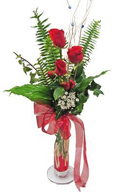 Çiçek gönderin cam vazoda 3 gül çiçekleri  Bingöl Gölüm Çiçek çiçek siparişi sitesi