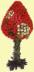 Bingöl Gölüm Çiçek çiçek gönderme  dügün açilis çiçekleri  Bingöl Gölüm Çiçek çiçek online çiçek siparişi