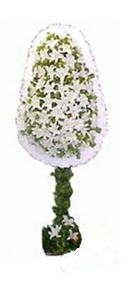 Bingöl Gölüm Çiçek çiçek siparişi sitesi  nikah , dügün , açilis çiçek modeli  Bingöl Gölüm Çiçek online çiçek gönderme sipariş