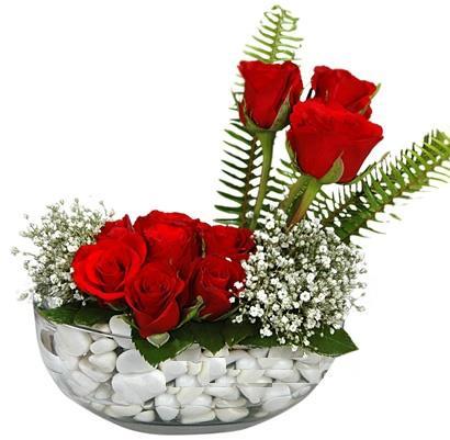 cam içerisinde 9 adet kirmizi gül  Bingöl Gölüm Çiçek çiçek siparişi vermek