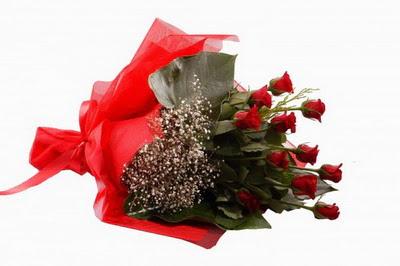 Bingöl Gölüm Çiçek çiçek siparişi sitesi  11 adet kirmizi gül buketi çiçekçi