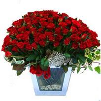 Bingöl Gölüm Çiçek çiçekçiler   101 adet kirmizi gül aranjmani