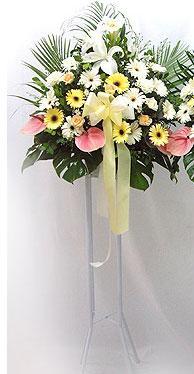 Bingöl Gölüm Çiçek online çiçek gönderme sipariş   perförje çiçegi dügün çiçekleri