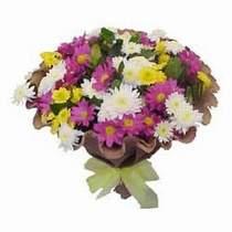 Bingöl Gölüm Çiçek çiçekçi telefonları  Mevsim kir çiçegi demeti