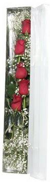 Bingöl Gölüm Çiçek çiçek siparişi sitesi   5 adet gülden kutu güller