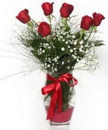 7 adet gülden cam içerisinde güller  Bingöl Gölüm Çiçek 14 şubat sevgililer günü çiçek
