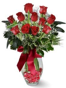 9 adet gül  Bingöl Gölüm Çiçek internetten çiçek satışı  kirmizi gül