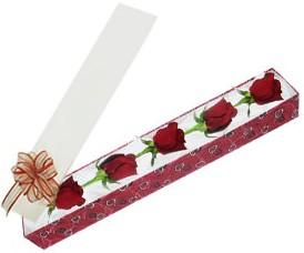 Bingöl Gölüm Çiçek internetten çiçek satışı  kutu içerisinde 5 adet kirmizi gül