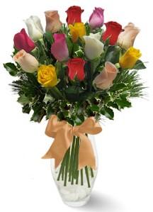 15 adet vazoda renkli gül  Bingöl Gölüm Çiçek internetten çiçek satışı