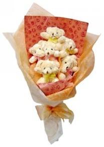 12 adet ayiciktan buket  Bingöl Gölüm Çiçek çiçek siparişi sitesi