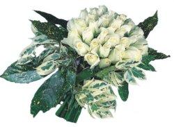 Bingöl Gölüm Çiçek internetten çiçek siparişi  9 Beyaz gül Özel kisiler için