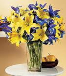 Bingöl Gölüm Çiçek anneler günü çiçek yolla  Lilyum ve mevsim  çiçegi özel