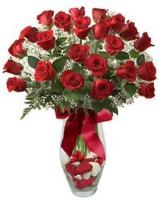17 adet essiz kalitede kirmizi gül  Bingöl Gölüm Çiçek çiçek mağazası , çiçekçi adresleri