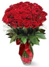 19 adet essiz kalitede kirmizi gül  Bingöl Gölüm Çiçek 14 şubat sevgililer günü çiçek