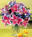 Bingöl Gölüm Çiçek çiçek mağazası , çiçekçi adresleri  Sevgi bahçesi Özel  bir tercih