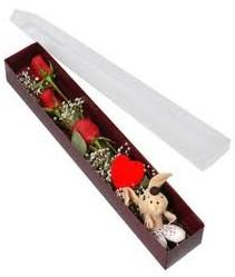 kutu içerisinde 3 adet gül ve oyuncak  Bingöl Gölüm Çiçek cicekciler , cicek siparisi