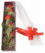 kutu içinde 5 adet kirmizi gül  Bingöl Gölüm Çiçek internetten çiçek siparişi