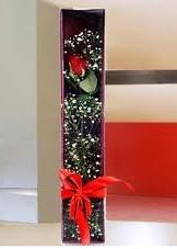 kutu içinde tek kirmizi gül  Bingöl Gölüm Çiçek çiçek online çiçek siparişi
