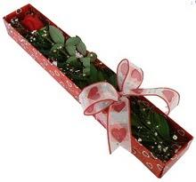 Tek kirmizi gül kutu içerisinde  Bingöl Gölüm Çiçek güvenli kaliteli hızlı çiçek