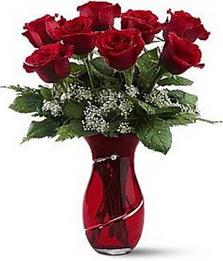 Vazo içinde 8 adet kirmizilar içinde güller  Bingöl Gölüm Çiçek internetten çiçek siparişi