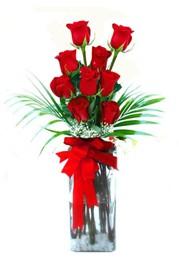 Bingöl Gölüm Çiçek çiçekçi telefonları  9 adet mika yada cam vazoda gül tanzimi