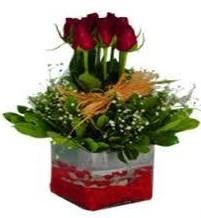 Bingöl Gölüm Çiçek çiçek gönderme  7 adet mika yada cam vazoda gül tanzimi