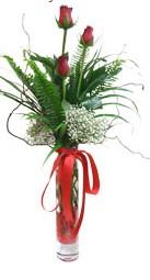 Bingöl Gölüm Çiçek çiçek siparişi sitesi  3 adet kirmizi gül vazo içerisinde