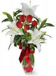 Bingöl Gölüm Çiçek çiçek siparişi vermek  5 adet kirmizi gül ve 3 kandil kazablanka