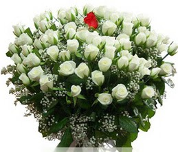 Bingöl Gölüm Çiçek internetten çiçek satışı  100 adet beyaz 1 adet kirmizi gül buketi